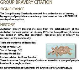 Group-bravery-Citation