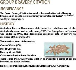 Group-bravery-Citation