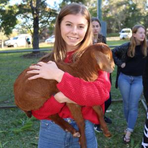 last-community-goat-farm-day-mango-hill